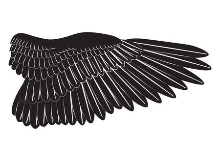 Bird wing silhouette isolated on white background illustration.
