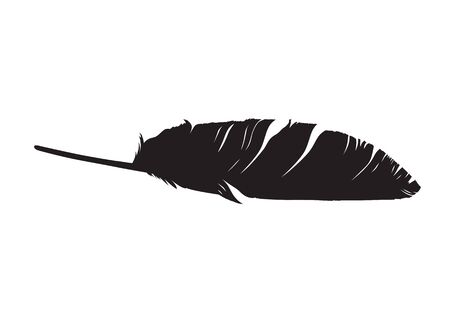 Bird feather silhouette on white background illustration.