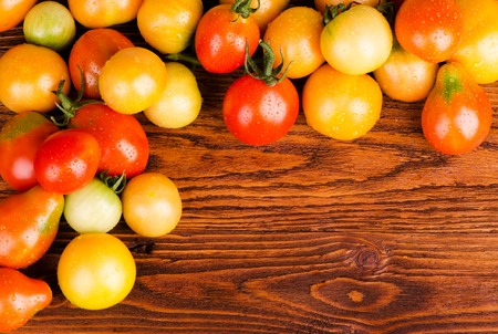 scattered: Multicolored tomatoes, scattered on the wooden surface