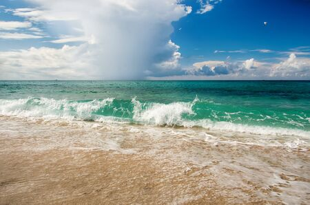 Beau paysage marin, surf de mer.