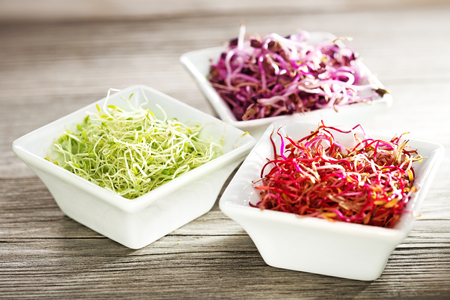 beetroot, radish and alfalfa sprouts in china bowls on wooden table