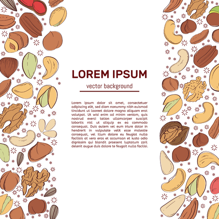 Corporate style template with hand drawn nuts and seeds. Peanut and sunflower seeds. Pistachio, cashew, hazelnut and macadamia. Great for packaging, label, greeting cards, event decor. Vector illustration.