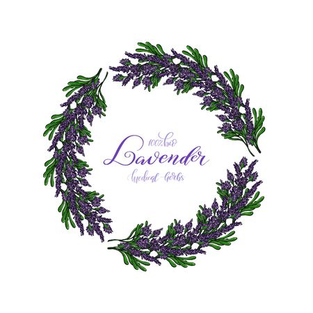 Lavender Card with flowers. Vintage Label with provence violet lavender. Wreath of Lavender. Greeting card provence herbs,  invitation card for wedding, birthday and other holiday and summer background. Vector illustration. Çizim