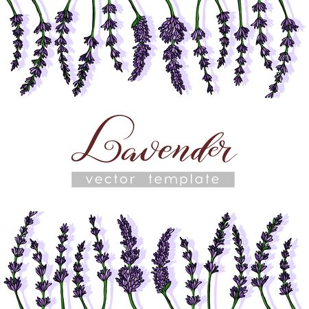 Lavender Card with flowers. Vintage Label with provence violet lavender. Background design for natural cosmetics, beauty store, health care products, perfume, essential oil. Vector illustration.