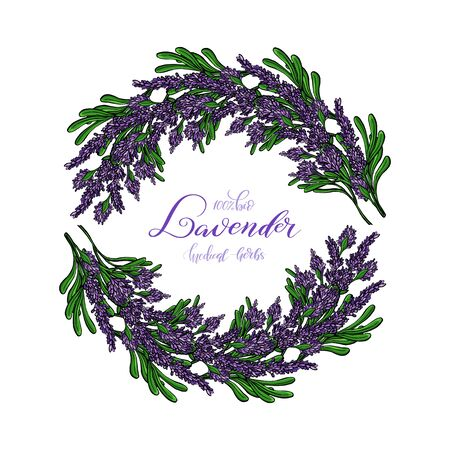 Lavender Card with flowers. Vintage Label with provence violet lavender. Wreath of Lavender. Greeting card provence herbs,  invitation card for wedding, birthday and other holiday and summer background. Vector illustration. Иллюстрация