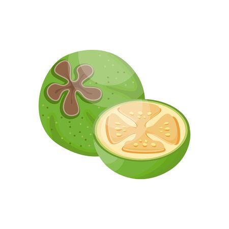 Feijoa, whole fruit and half. Tropical fruits for a healthy lifestyle. Vector illustration cartoon flat icon isolated on white.