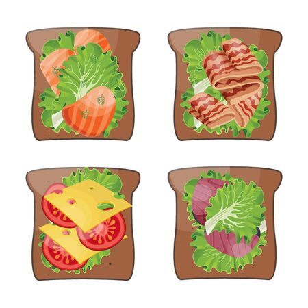 Set of 4 sandwiches. Sandwich Salmon and lettuce, bacon and greens, cheese and tomato, tuna and lettuce on toast. Sandwich and ingredients. Vector.