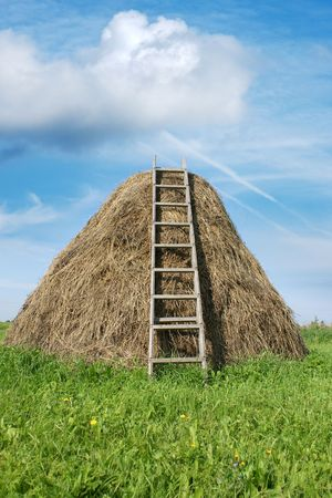 hayrick: Haystack with a ladder, a vertical picture Stock Photo