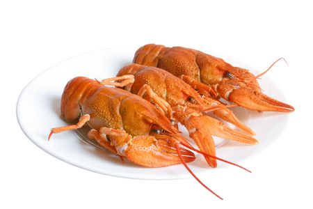 Crawfishes on plate isolated on the white background photo
