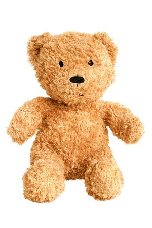 Teddy bear isolated on the white background photo