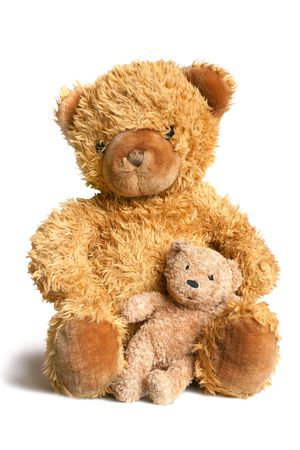Big bear with bear cub isolated on the white background Stock Photo - 6111448
