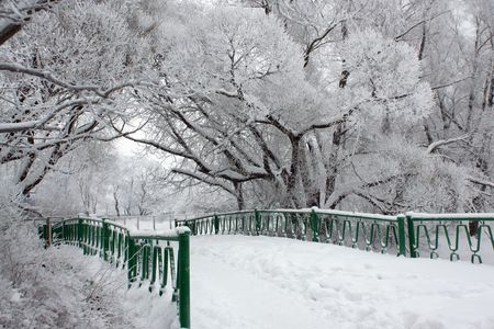bridge in the forest: Bridge in winter park, a horizontal picture