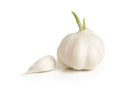 Clove and bulb of garlic on a white background photo
