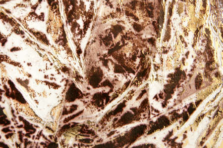 Natural decorated leather, for backgrounds or textures photo