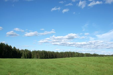 Blue sky and green field, for backgrounds or textures photo