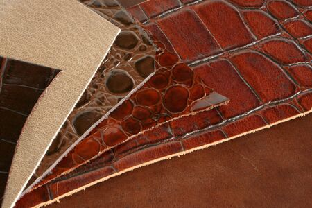 The patterns of natural brown leathers photo