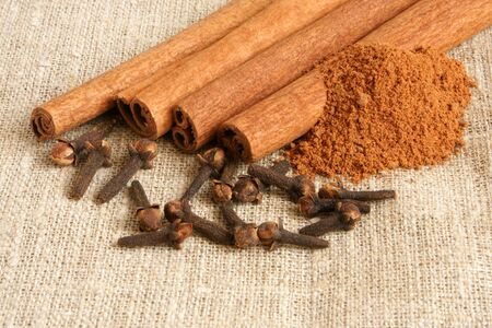 stick of cinnamon: Cinnamon and cloves on a cloth background