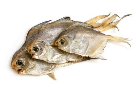Dried piranhas on a white background photo