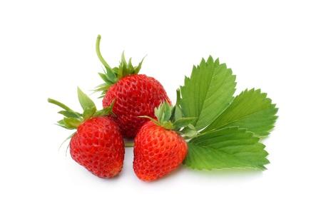 frutillas: Fresas frescas con las hojas sobre un fondo blanco Foto de archivo