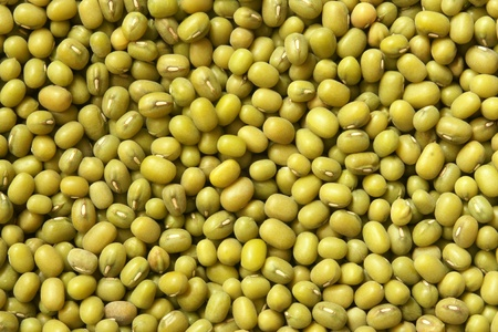 Mung beans, for backgrounds or textures Stock Photo - 10522593