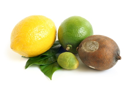 spoilage: Fresh and moldy dried lemons and lime with green leaves on a white background