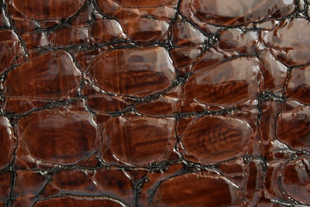 Natural brown leather background closeup Stock Photo - 11071828