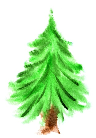 Watercolor Christmas tree isolated on a white background photo