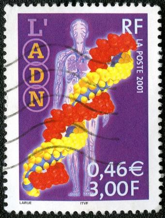 adn: FRANCIA - CIRCA 2001: Un sello impreso en Francia muestra de ADN, serie, alrededor del año 2001 Foto de archivo