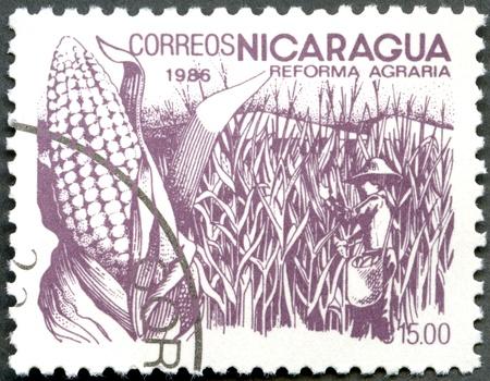 NICARAGUA - CIRCA 1986: A stamp printed in Nicaragua shows image of agrarian reform, Corn, circa 1986 Stock Photo - 12950339