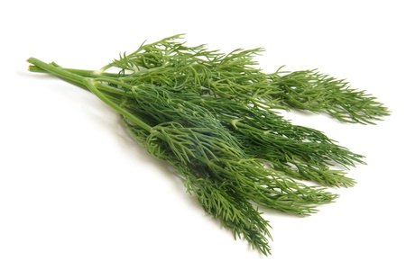vegetable cook: Fresh dill on a white background