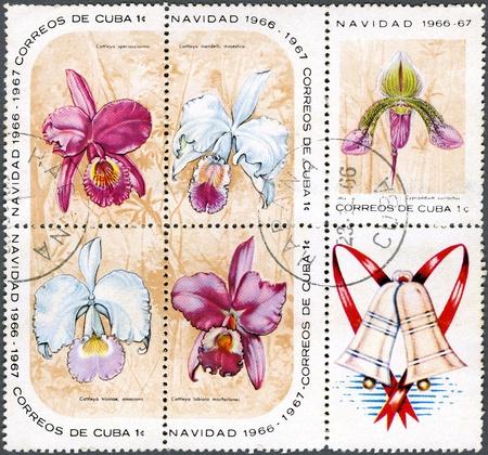 stamp collecting: CUBA - CIRCA 1966: A Stamp printed in Cuba shows Block of Cypripedium eurylochus, Cattleya speciosissima, Cattleya mendelii majestica, Cattleya trianae amesiana, Cattleya labiata macfarlanei and christmas label, circa 1966