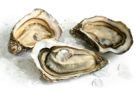 Rauwe oesters met ijs op een witte achtergrond Stockfoto
