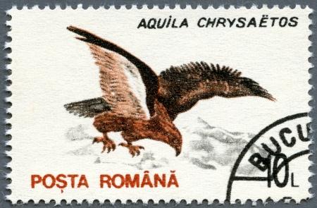 aigle royal: ROUMANIE - CIRCA 1993: Un timbre imprimé en Roumanie montre Golden Eagle (Aquila chrysaetos), vers 1993 Banque d'images