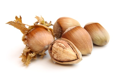 Hazelnuts on a white background Stock Photo - 15202772
