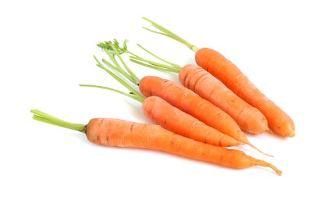 Fresh carrots on a white background photo