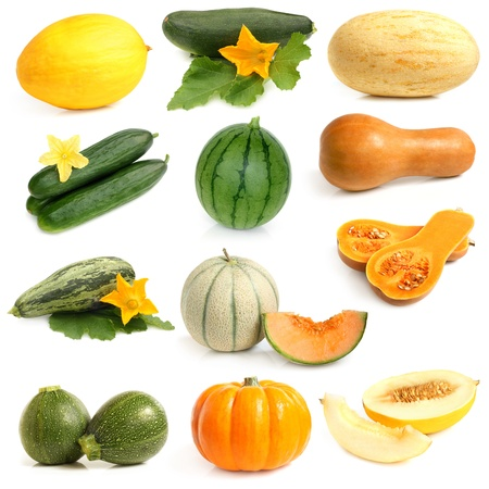 Vegetable and fruits collection (Cucurbitales) on a white background Stock Photo
