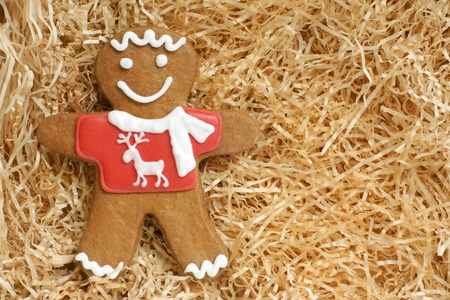 Christmas gingerbread cookie on a paper shaving Stock Photo - 16326099