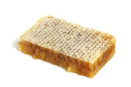 praiseworthy: Honeycombs with honey on a white background