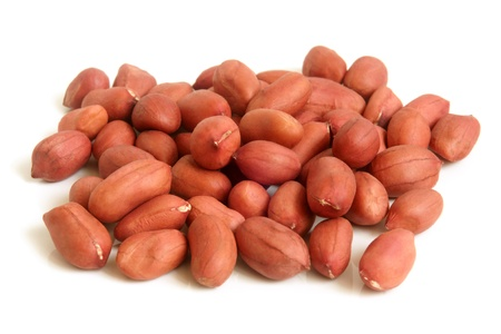 earthnut: Groundnuts on a white background