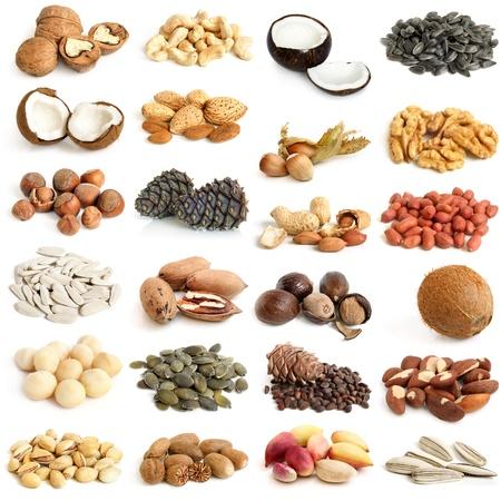 sementi: Raccolta di noci su uno sfondo bianco