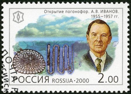 xx century: RUSSIA - CIRCA 2000: A stamp printed in Russia shows A.V.Ivanov (1906-1992), series Russia, XX century, Science, circa 2000