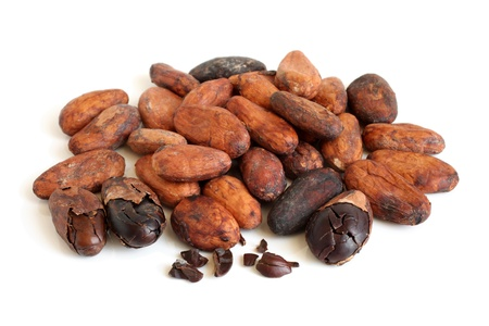 Cacao beans on a white background photo
