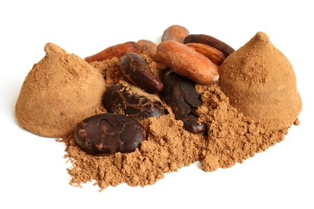 Cacao beans, cacao powder and chocolate sweets on a white background photo