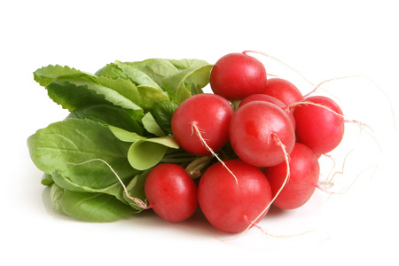 Fresh radishes on a white