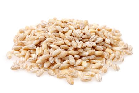 cebada: Cebada perla en un fondo blanco