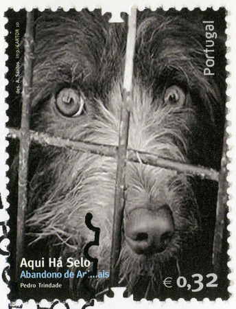 abandonment: PORTUGAL - CIRCA 2010: A stamp printed in Portugal shows dog, image of abandonment of animals, circa 2010