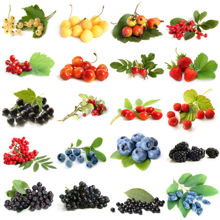 Collection of ripe berries on white background photo
