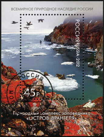 world natural heritage: RUSSIA - CIRCA 2012: A stamp printed in Russia shows natural system of Wrangel Island Reserve, World Natural Heritage of Russia, circa 2012 Editorial