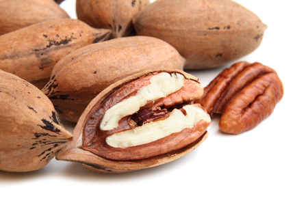 pecan: Pecan nuts on white background