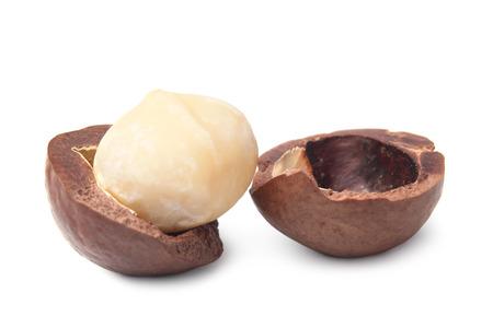 Macadamia nut on white background photo